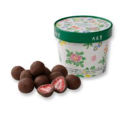 육 화정 딸기 초코 우유 100g
